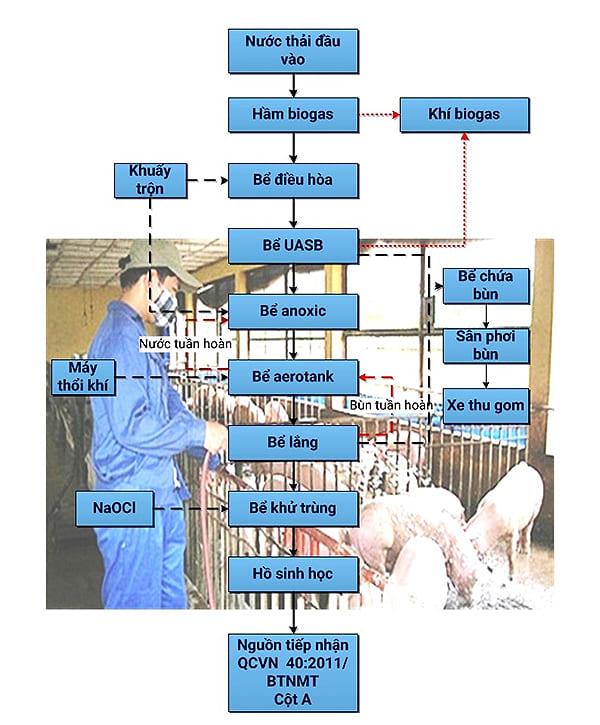 Hệ thông xử lý nước thải chăn nuôi