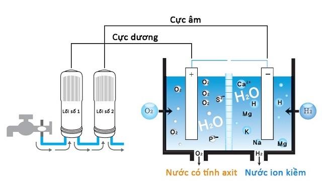 Cấu tạo của máy điện giải gồm lõi lọc và buồng điện phân