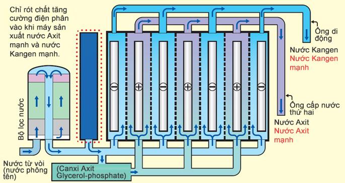 Máy điện giải ion kiềm Kangen LeveLuk SD501 Platinum