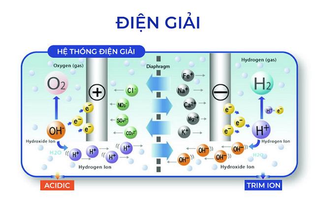 Máy điện giải ion kiềm Trimion Gracia